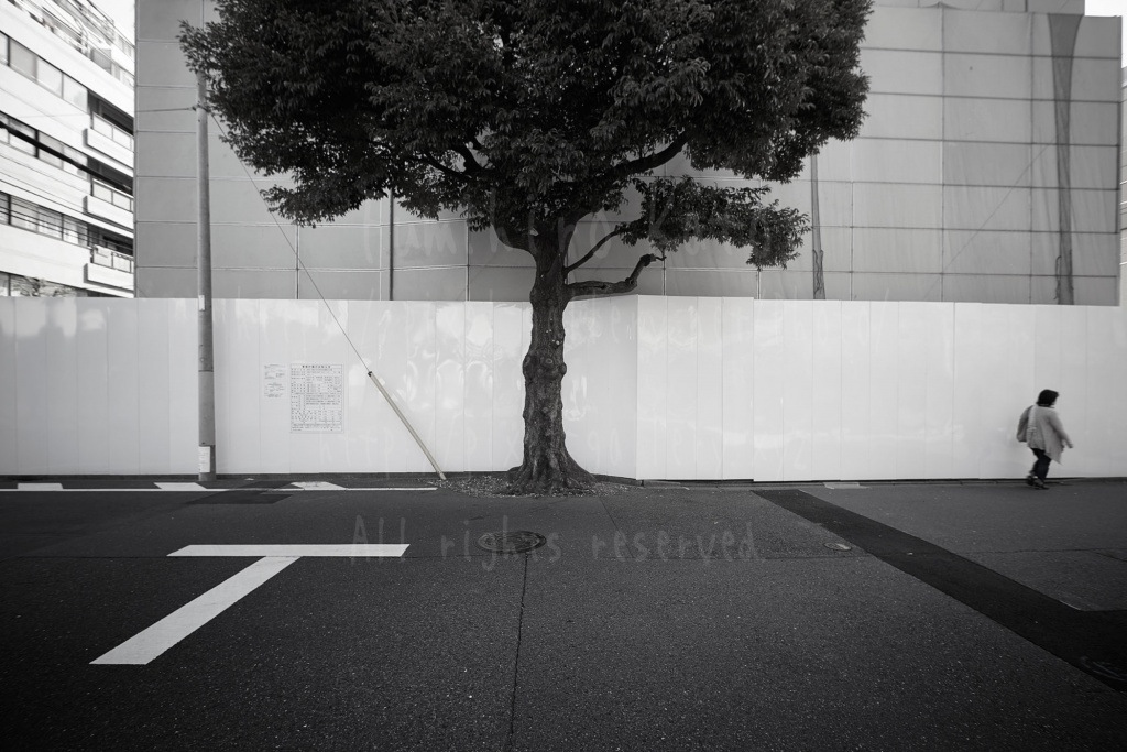 musako_2016_20987