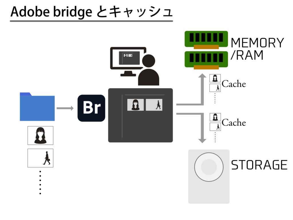 Adobe bridgeとキャッシュ